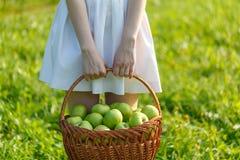 Dziewczyny mienia wielcy kosze jabłka Obraz Royalty Free