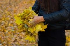 Dziewczyny mienie w ręka liści kobiety żółtym stojaku plenerowym Zdjęcie Stock
