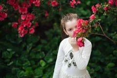 dziewczyny obw?chania kwiaty azalie kwiatono?ne azalie w parku zdjęcia stock