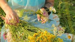 Dziewczyny odprowadzenie przez łąki i pętle przez wildflowers zbiory wideo