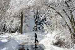 Dziewczyny odprowadzenie w śnieg zakrywającym krajobrazie obraz royalty free