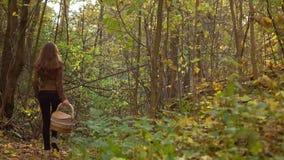 Dziewczyny odprowadzenie w jesień lesie trzyma kosz 4K steadicam wideo zbiory wideo