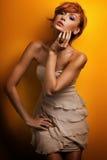 dziewczyny piękna rudzielec Zdjęcie Royalty Free