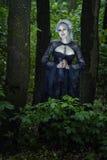 Dziewczyny piękna czarownica Obrazy Royalty Free