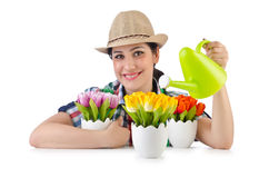 Dziewczyny podlewania rośliny Obraz Royalty Free