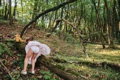 Dziewczyny pozycja w drewno portrecie dziewczyna w drewnach Niedźwiedź zdjęcie stock