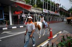 Dziewczyny przejażdżki konie w pobliżu Kuala Lumpur wierza Fotografia Stock