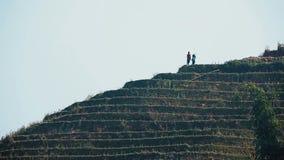 Dziewczyny przy tarasowatymi górami w Sa Pa zbiory
