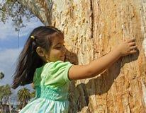 dziewczyny przytulenia drzewo Fotografia Royalty Free