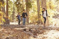Dziewczyny równoważenie na drzewie w lasów spojrzeniach ojcować i bracie Zdjęcia Stock