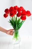 Dziewczyny ręki chwyta tulipanów czerwony bukiet w szklanej wazie na drewno stole Fotografia Stock