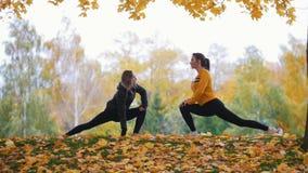 Dziewczyny rozciąga w parku Gimnastyczki na szkoleniu Jesień zbiory