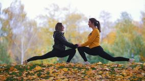 Dziewczyny rozciąga w parku Gimnastyczki na szkoleniu Jesień Sezon Jesienny zbiory wideo