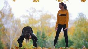 Dziewczyny rozciąga w parku Posyła plandeki Gimnastyczki na szkoleniu Jesień zdjęcie wideo