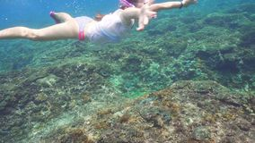 Dziewczyny snorkelling podwodny zbiory wideo