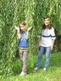 Dziewczyny stać pod wierzbowym drzewem zdjęcie royalty free