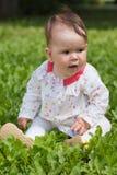 dziewczyny trawy zieleni mały obsiadanie Zdjęcie Stock