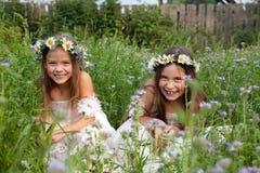 Dziewczyny w wiankach chamomiles w trawy śmiać się Zdjęcia Royalty Free