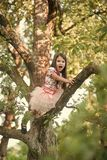 Dziewczyny wspinaczka na drzewie zdjęcie royalty free