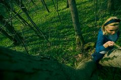 dziewczyny wspinaczkowy drzewo. Obrazy Royalty Free