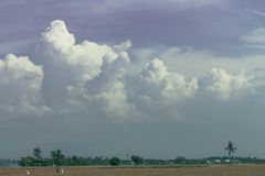 Dziewic chmury obraz royalty free