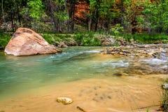 Dziewicza rzeka Fotografia Stock