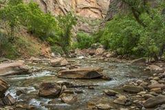 Dziewicza rzeka w Zion parku narodowym Zdjęcia Royalty Free