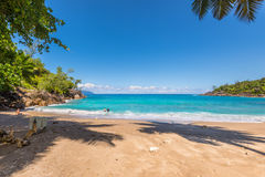Dzika Anse Ważna plaża w Mahe wyspie, Seychelles Zdjęcia Stock