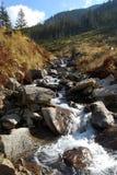 dzika góry gigantyczna natura Zdjęcia Stock