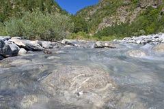 dzika natury rzeka Obrazy Stock