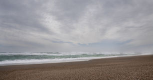 Dzika Osamotniona plaża Obraz Royalty Free