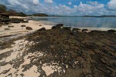 Dzika plaża Zdjęcia Royalty Free