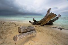 Dzika plaża Obraz Royalty Free