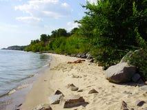 Dzika plaża rzeką między lasem, obrazy royalty free