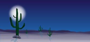 Dzika pustynna scena Fotografia Stock