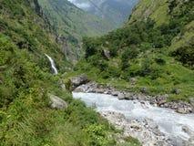 Dzika rzeka zdjęcia stock
