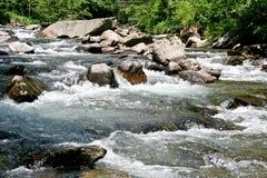 Dzika rzeka, Rumunia Fotografia Stock