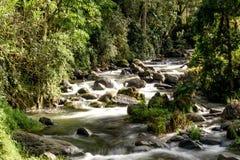 Dzika rzeka w montains Costa Rica zdjęcia royalty free
