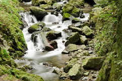 dzika szczegół rzeka Zdjęcia Royalty Free