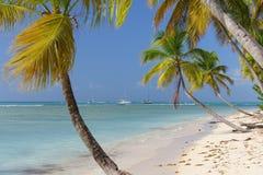 Dzika tropikalna plaża w wyspie karaibskiej Fotografia Royalty Free
