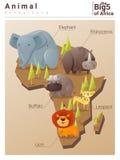 Dziki Afrykański zwierzęcy tło Duzi pięć Obrazy Stock