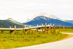 Dziki Alaski rurociąg Fotografia Stock