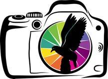 Dziki fotografia projekt ilustracja wektor