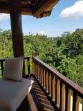 Dziki i spokój indonezyjska dżungla fotografia stock