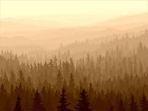 Dziki iglasty drewno w ranek mgle. Royalty Ilustracja