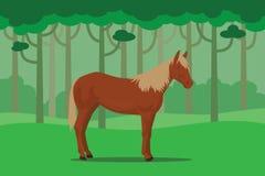 Dziki koń w dżungli samotnie z drzewnym lasem jako tło royalty ilustracja