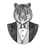 Dziki kota lamparta kota ` - halna ręka rysująca pantery ilustracja Obraz Stock