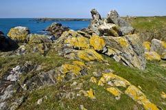 Dziki linia brzegowa krajobraz Yeu wyspa Zdjęcia Royalty Free