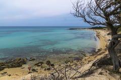 Dziki morze 01 Zdjęcia Stock
