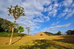 dziki północny Thailand Obrazy Royalty Free